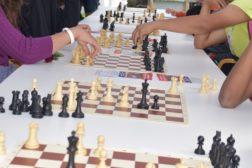 Spill sjakk på Haugerud i sommer